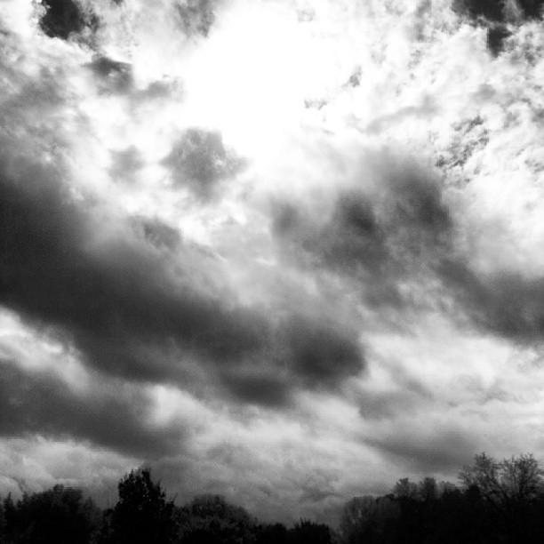 Il cielo di Villa Pamphilj, ottobre 2013, LC