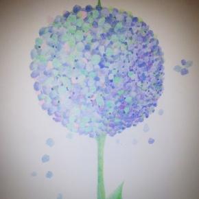 Moonflower, pencil, 2015