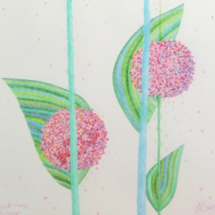 Sunset moonflowers, pencil, 2015